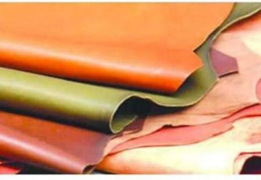চামড়া শিল্পের জন্য সহায়ক নীতি প্রয়োজন