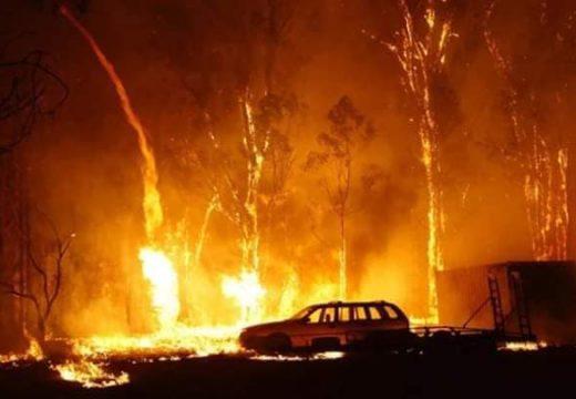নিয়ন্ত্রণের বাইরে অস্ট্রেলিয়ার দাবানল :বৃষ্টি বন্দনায় গোটাদেশ