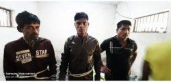 গোলাপগঞ্জে পৃথক অভিযানে গাঁজাসহ ৩ মাদক ব্যবসায়ী আটক